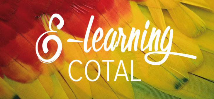 E-Learning COTAL : les résultats !